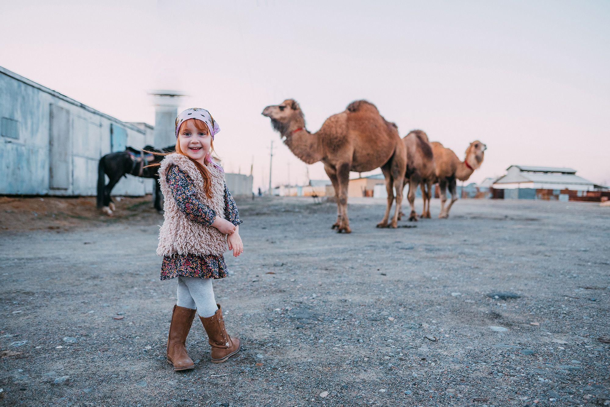 Вера и верблюды